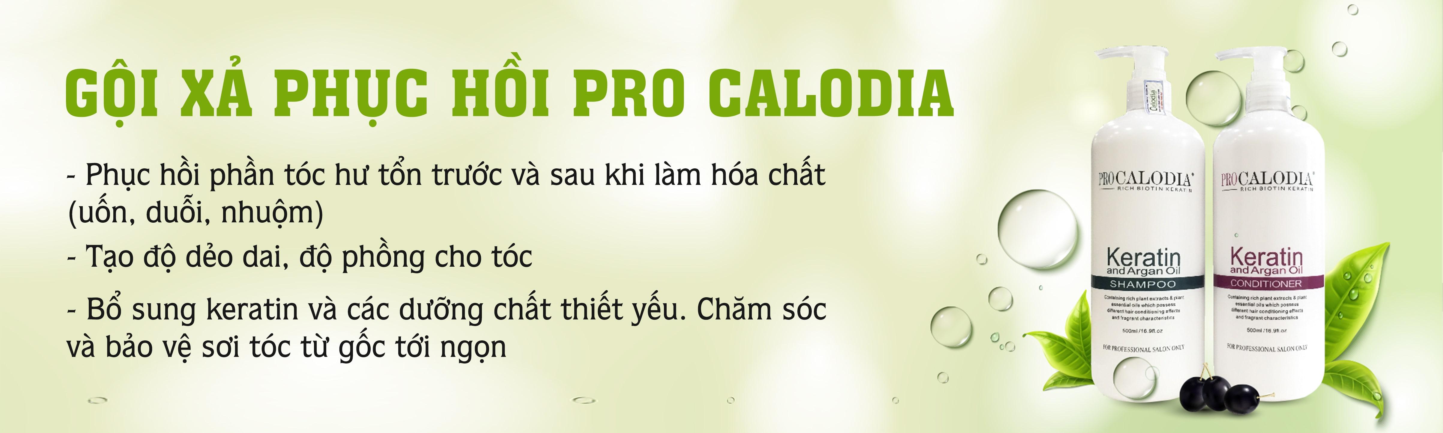 1561368245_bo-dau-goi-xa-phuc-hoi-pro-calod.jpg